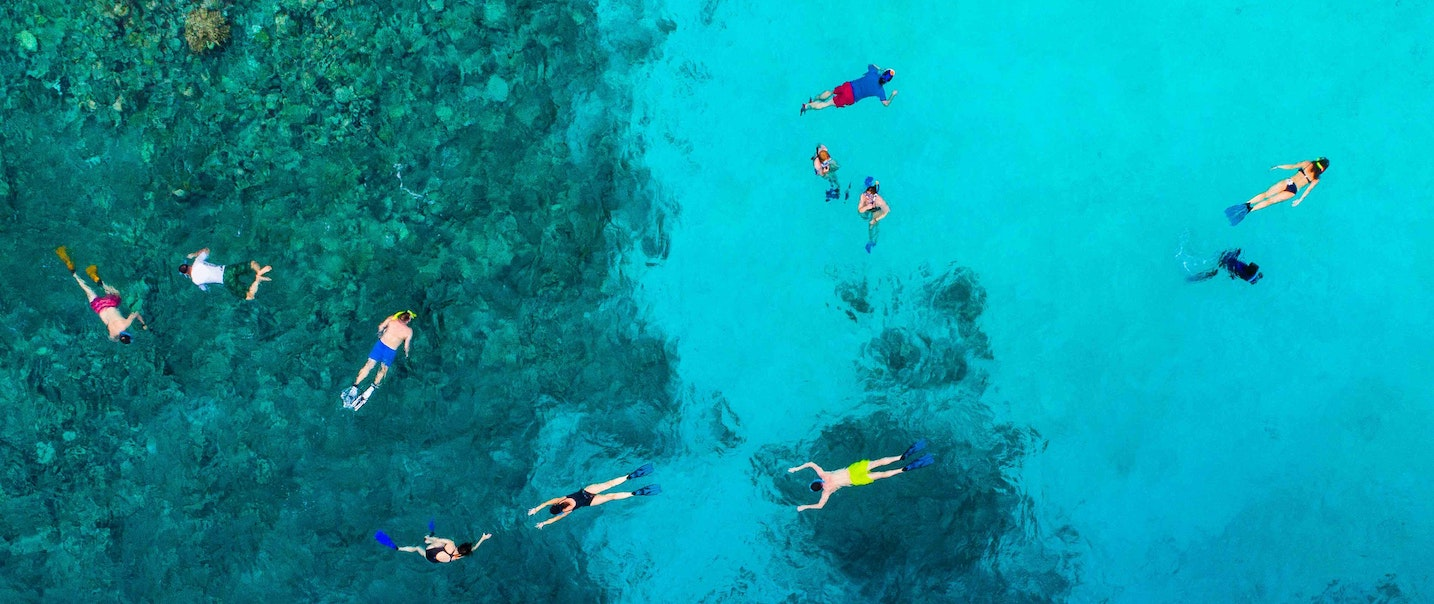 A group of people are snorkeling